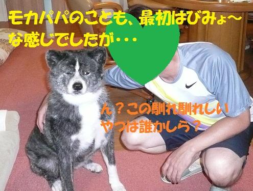 f0121712_7144914.jpg
