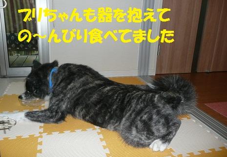 f0121712_7343956.jpg