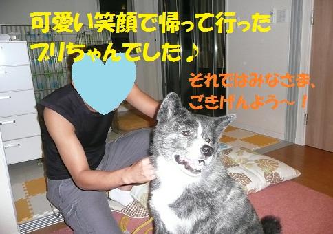 f0121712_93443.jpg