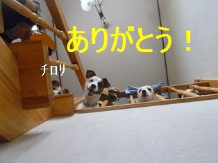 d0182026_16144076.jpg