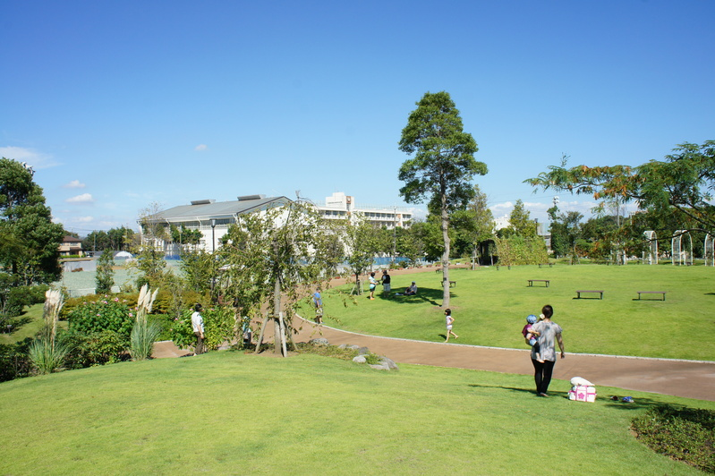 ゆいの花公園  2011.9.18_e0223771_1925432.jpg