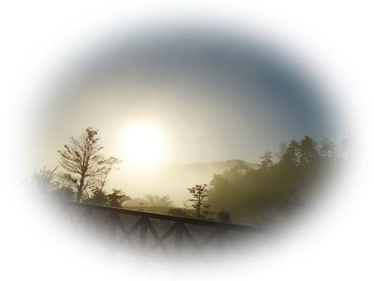 朝から・・・・_a0199979_16343513.jpg