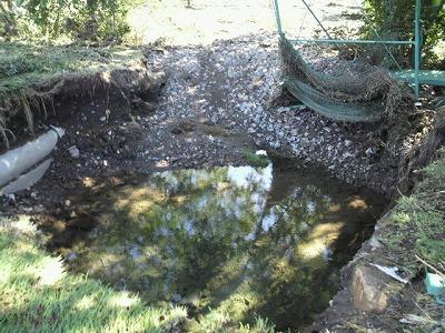 水が引けた後・・・_b0219993_13281017.jpg