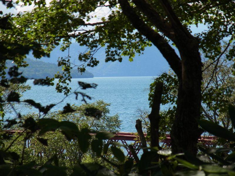 千歳空港から初秋の支笏湖へ_c0025115_228238.jpg