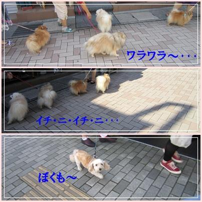 b0167519_17575080.jpg