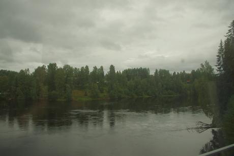 f0154524_193815.jpg