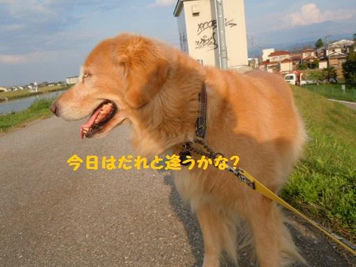 f0114128_17295242.jpg