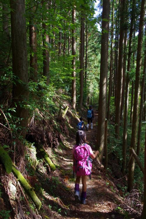 秋の天川村キャンプ(2日目)_c0113733_23144524.jpg