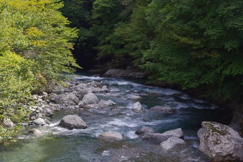 秋の天川村キャンプ(2日目)_c0113733_2314928.jpg
