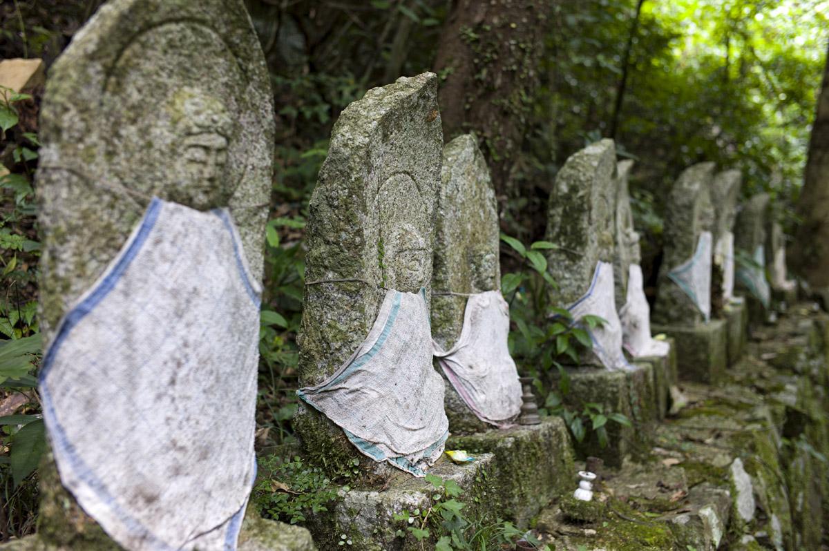 紫川源流:菅生の滝へ〜M9一周年記念〜_c0028861_2148253.jpg