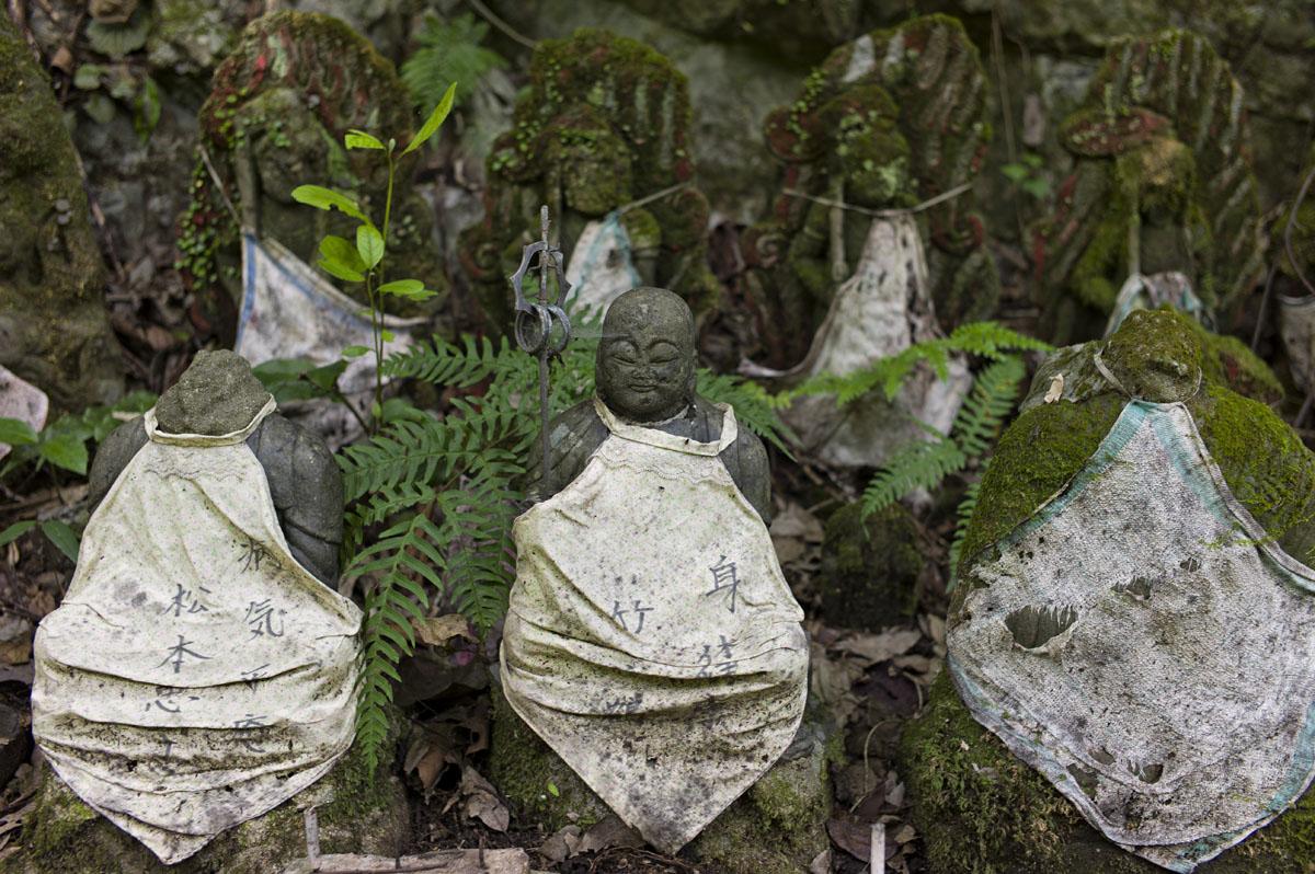 紫川源流:菅生の滝へ〜M9一周年記念〜_c0028861_21485431.jpg