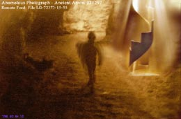 謎の遺跡「ウィングメーカー」とは何か?6:ネルダ博士インタビュー_e0171614_12172860.jpg