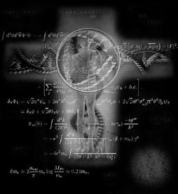 謎の遺跡「ウィングメーカー」とは何か?5:天才言語学者ネルダ博士_e0171614_125156.jpg