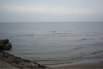 今日の海_c0132732_8535192.jpg
