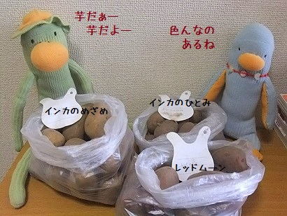 b0118850_1251062.jpg