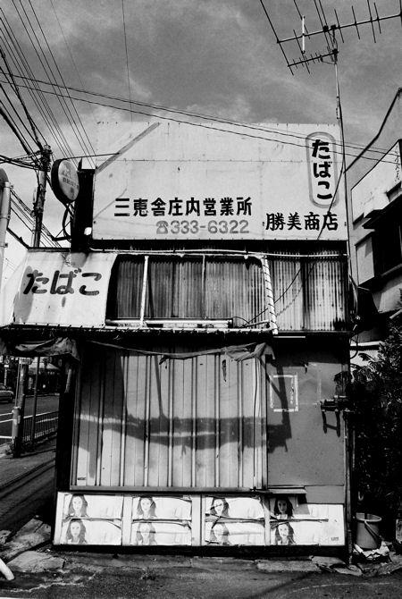 庄内散歩_c0181552_4564532.jpg