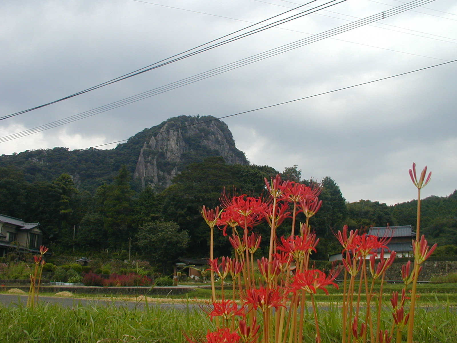 御船山(艫岳断崖を望む)_b0114756_1833171.jpg