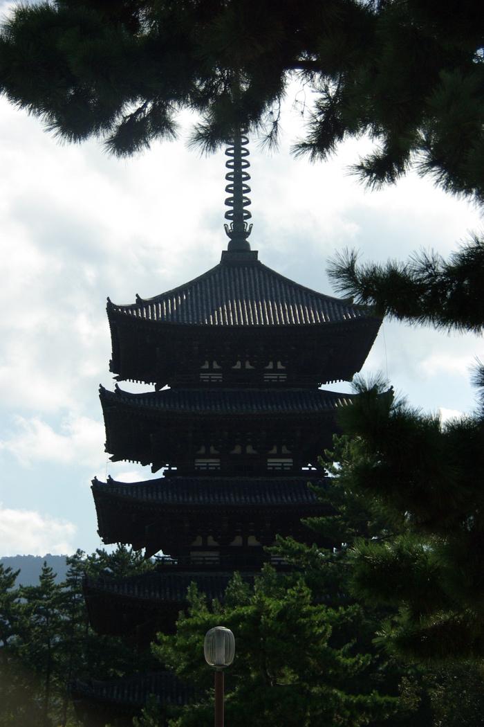 Photo-sketch of Nara: 興福寺/Kohfuku-ji _e0140365_2255564.jpg