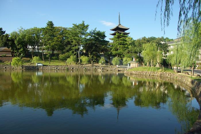 Photo-sketch of Nara: 興福寺/Kohfuku-ji _e0140365_2256260.jpg