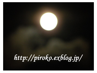 b0010775_1020314.jpg