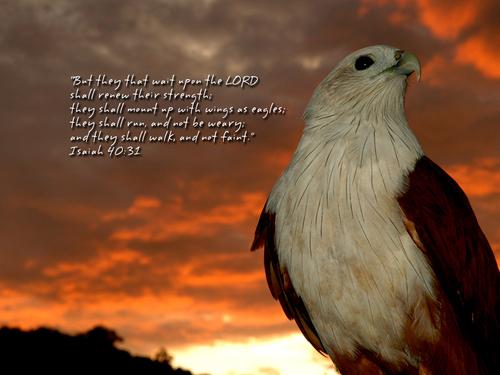 9月28日アモス書1‐3章『語られる神』_d0155777_9273628.jpg