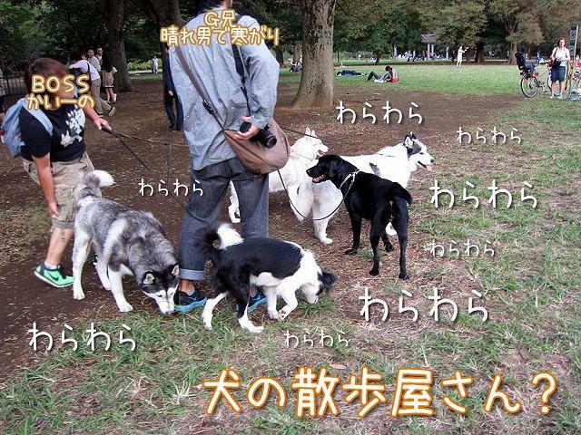 おっきな公園3連勤!_c0062832_614378.jpg