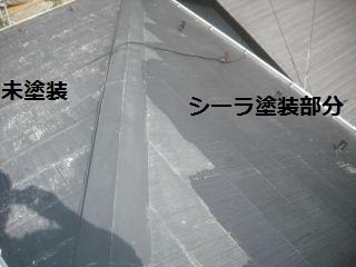 f0031037_208061.jpg
