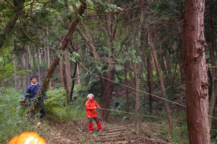 六国見山森林公園のヒノキ伐採に着手(2011・9・27)_c0014967_20195485.jpg