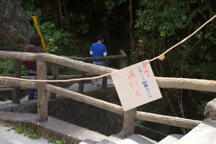ヒヤリ、台風15号で六国見山森林公園のスギが倒木_c0014967_21315427.jpg