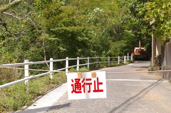 ヒヤリ、台風15号で六国見山森林公園のスギが倒木_c0014967_2131991.jpg