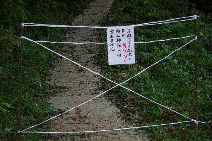 ヒヤリ、台風15号で六国見山森林公園のスギが倒木_c0014967_2132108.jpg