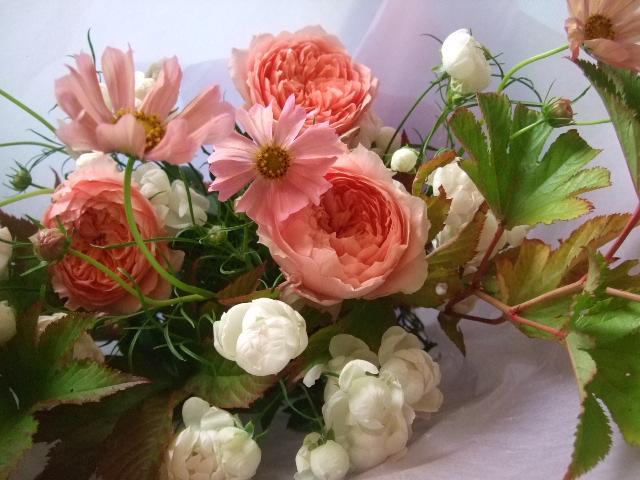 オークリーフ(夕焼け色のバラ)_f0049672_1049774.jpg