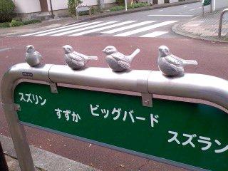スズメの名前/Sparrow_d0090888_23431577.jpg