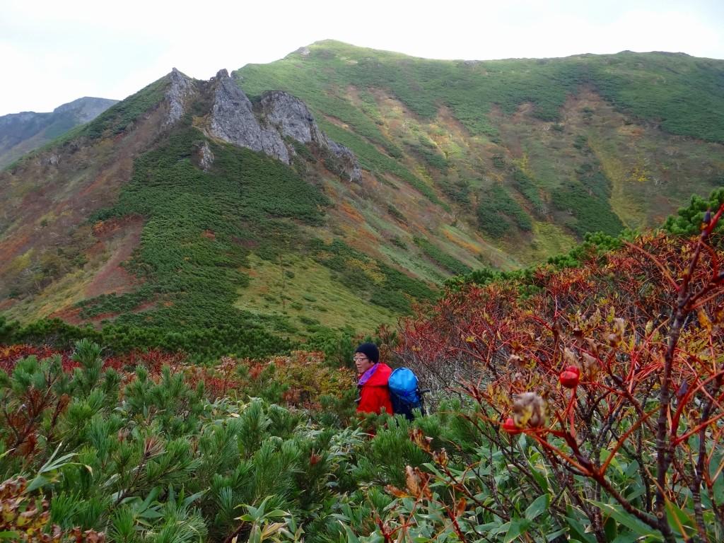 9月24日、平山・ニセイカウシュッペ山ピストン-最終編-_f0138096_15114722.jpg