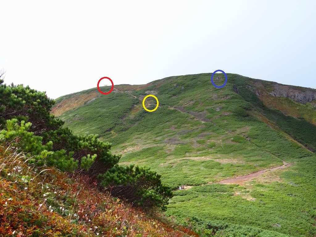 9月24日、平山・ニセイカウシュッペ山ピストン-最終編-_f0138096_1581639.jpg