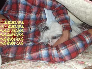 f0179203_73837100.jpg