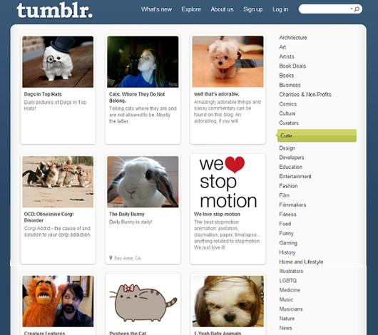 成長著しいタンブラー(Tumblr)の創業者は25歳のニューヨーカー_b0007805_3252515.jpg