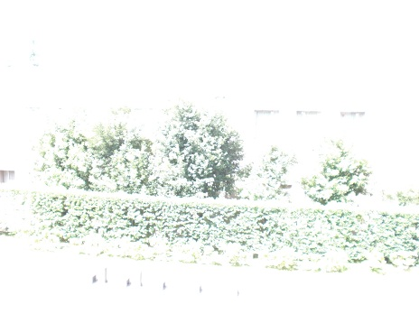 b0091243_12205621.jpg
