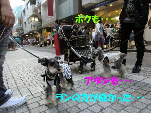 b0206444_1621690.jpg