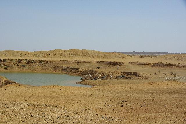 【スーダン周遊】 ムサワラット遺跡 (6) 湧水池の風景_c0011649_2026897.jpg