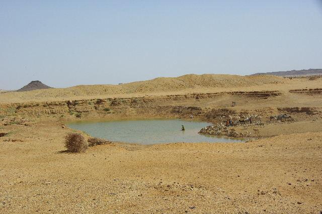 【スーダン周遊】 ムサワラット遺跡 (6) 湧水池の風景_c0011649_20283196.jpg
