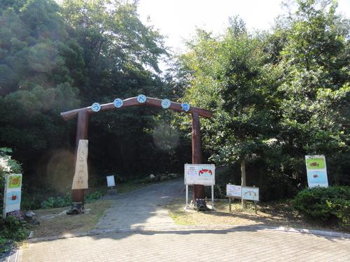 うみべの森のチェック   by  (TATE-misaki)_c0108460_1511761.jpg