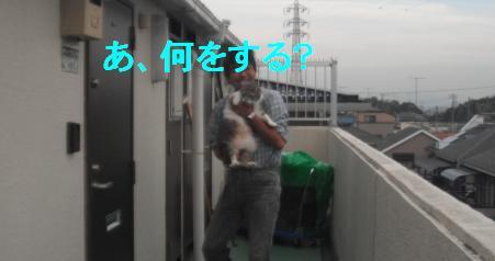 b0112380_2034133.jpg