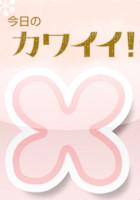 女性に優しいエキサイト・ブログよりカメラ・プレゼント大キャンペーン_b0007805_1082390.jpg