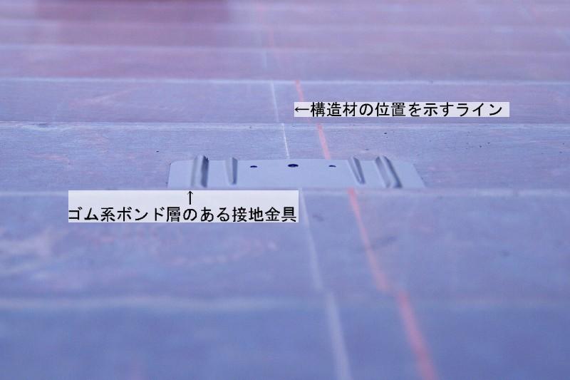 b0003512_1851535.jpg