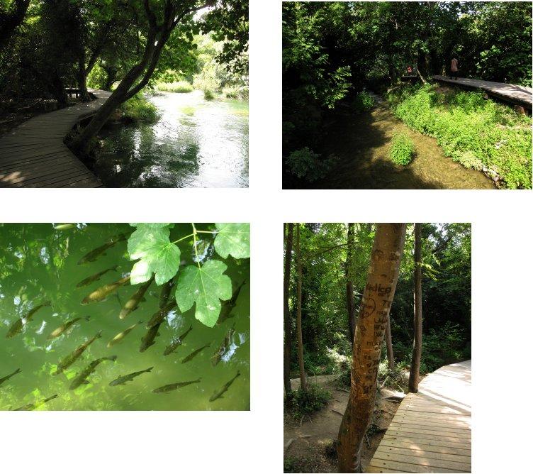 クロアチア編(24):クルカ国立公園(10.8)_c0051620_6163320.jpg