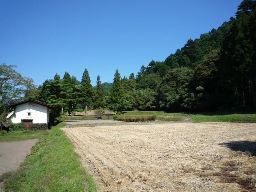 庭木手入れと砂利敷き_c0112447_23445097.jpg