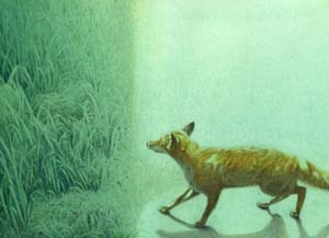 蔵織・スタッフ水上祐子(細密画)の作品展がj始まります。_d0178448_10592620.jpg