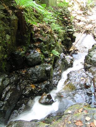 滝ノ沢と不動の滝_f0078286_8453991.jpg