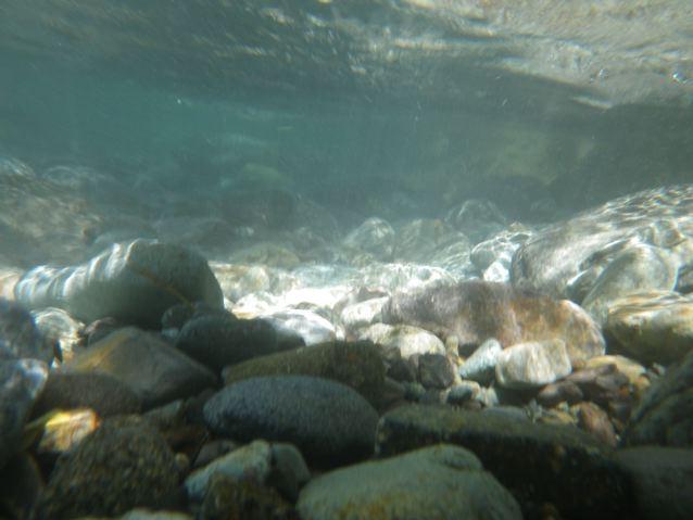 水のある風景_f0144003_1001048.jpg